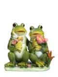 Frogs in Love Royalty Free Stock Photo