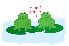 Frogs in love. Two frogs in love sitting on lily pads looking sideways at each other Royalty Free Stock Images