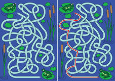 Frogs Maze Stock Image