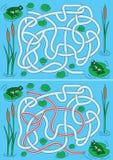 Frogs Maze Stock Photos