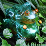 Frogs Plastic sculptures Pet Art. Sculptures of frogs made of plastic bottles made by Veronika Richterova. Sculptures are instaled as a part of plants exhibition Royalty Free Stock Image