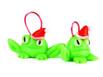 Frogs with santa hat Stock Images