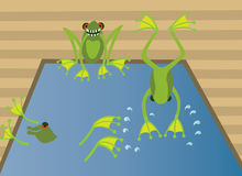 Frogs swimming pool royalty free illustration