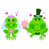 Frogs wedding. Vector illustration of cute bride and groom frogs and toads getting married Stock Image