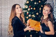 Frohe aufgeregte herrliche Frauen des Porträts zwei mit dem langen gelockten Haar Partei des neuen Jahres auf großem Geschenk des lizenzfreie stockfotos