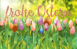 Frohe ostern Stock Image