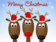 Frohe Weihnacht-Ren Lizenzfreie Stockfotos