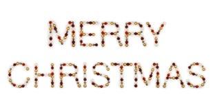 Frohe Weihnacht-Zeichen Stockfotos