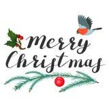 Frohe Weihnachten Beschriftung mit Fichtenzweig und Vogel vektor abbildung