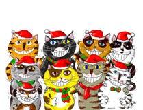 Frohe Weihnachten Santa Cats Greetings Lizenzfreie Stockfotos