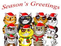 Frohe Weihnachten Santa Cats Greetings Stockbild