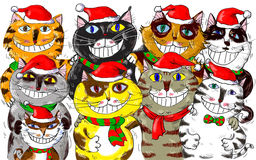 Frohe Weihnachten Santa Cats Greetings Lizenzfreies Stockfoto