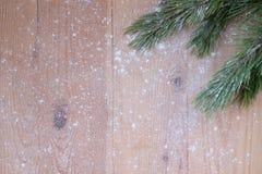 Frohe Weihnachten und guten Rutsch ins Neue Jahr, Kiefer im Schnee Stockfotografie