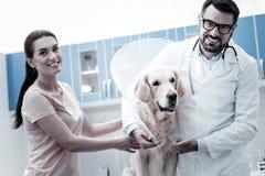Froher positiver Mann, der e-Kragen auf den Hund setzt Lizenzfreies Stockfoto