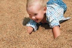 Frohes blondes Kleinkind, das auf den Weizenkörnern liegt Stockfotografie