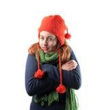 Froid de l'hiver Photos stock