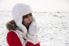 Froid de l'hiver photo stock