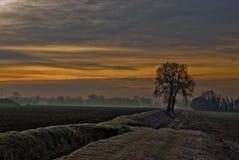 Froid de lever de soleil Image libre de droits