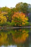 Froid scénique de lac d'eau douce d'amour de tourisme de voyage de nature de chute d'hiver d'automne de réflexion d'arbres de cou Photo libre de droits