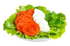 Fromage avec la tomate et la salade Photo libre de droits