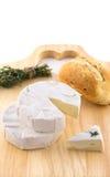 Fromage avec le moulage et les herbes blancs Images stock
