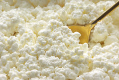 Fromage blanc Photo stock