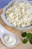 Fromage blanc avec de la crème aigre photo libre de droits