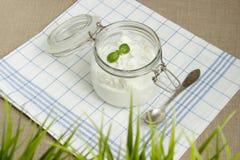 Fromage blanc dans un pot avec le basilic Images libres de droits