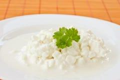 Fromage blanc de laiterie photo libre de droits