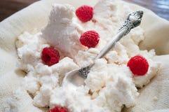Fromage blanc domestique avec la framboise Photographie stock