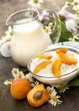 Fromage blanc et lait Photos stock
