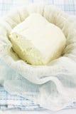 Fromage blanc fait main organique frais Photo stock