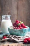 Fromage blanc fait maison frais avec des framboises Photo libre de droits