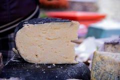 Fromage coupé sur la nourriture de rue de fond fastival image stock