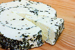 Fromage d'herbe Photos stock