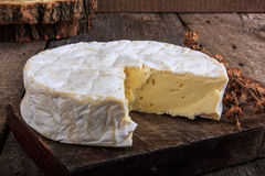 Fromage de camembert Photographie stock