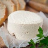 Fromage de chèvre avec du pain images stock