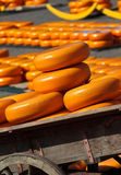Fromage de Hollande sur le marché à Alkmaar Images libres de droits