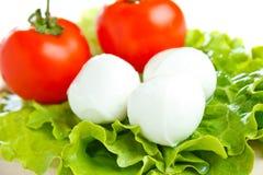 Fromage de Mozarella avec la tomate Images stock