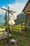 Fromage de parc à moutons Photo stock