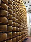 Fromage de parmesan-Reggiano Photo stock