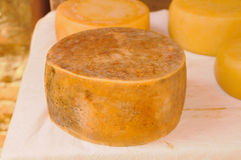 Fromage de Pecorino Image libre de droits