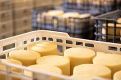 Fromage disposé dans des boîtes à l'entrepôt de fromagerie photo libre de droits