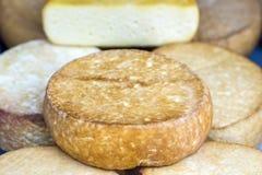 Fromage domestique sur le marché libre Image libre de droits