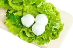 Fromage et salade Images libres de droits