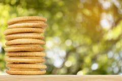Fromage fondu de biscuit avec le fond abstrait de tache floue de bokeh de nature Images stock