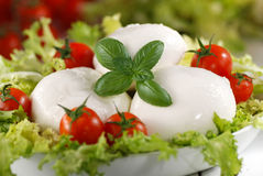 Fromage italien de mozzarella Photos stock