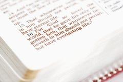 Fromme Bibel. Lizenzfreie Stockbilder