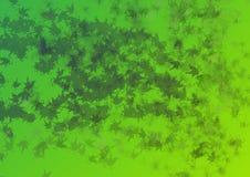 1 frondoso giallo Fotografia Stock Libera da Diritti