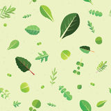 Frondoso verde Fotografie Stock